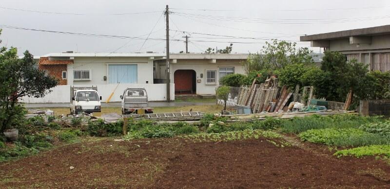 宮古島の日常風景写真-家庭の畑