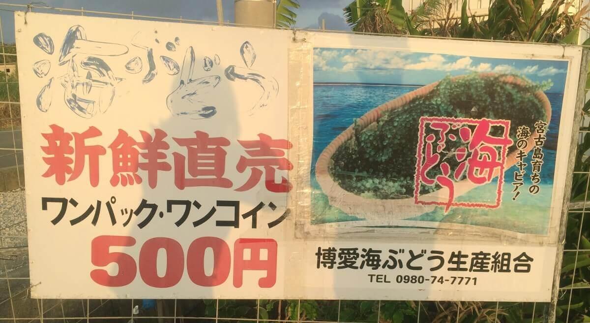 海ぶどう屋さんの看板