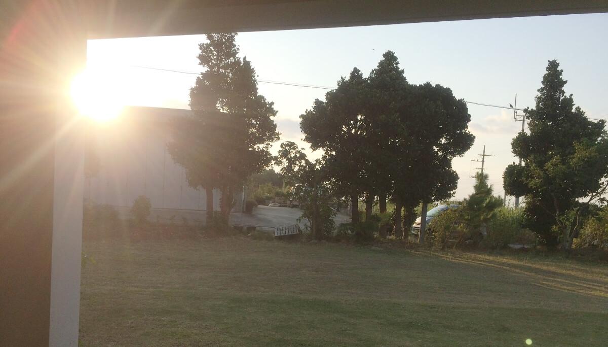 宮古島エコハウスの朝の風景(2)