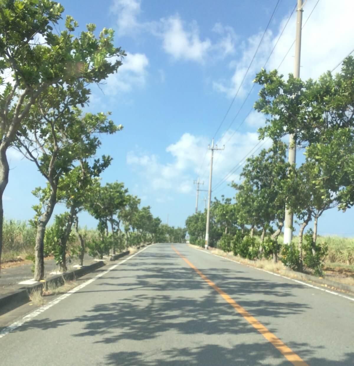 宮古島から来間島へ向かう道路