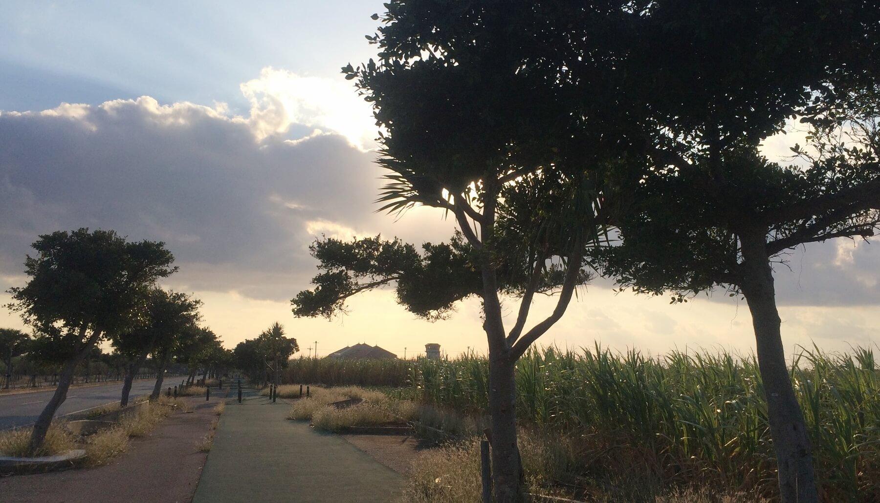 宮古島空港まで歩いて向かう途中の夕焼けの風景