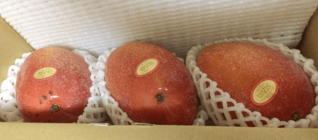 宮古島から届いたマンゴー