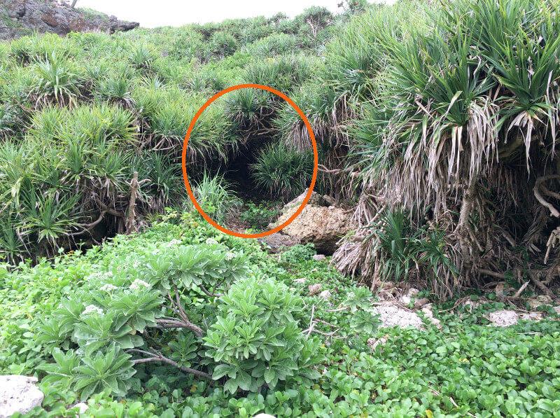 石灰華段への入口となる崖への入口の目印