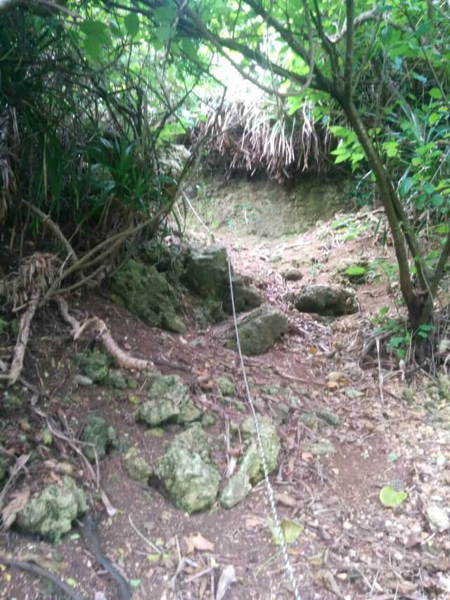 宮古島「石灰華段」へ行く途中の急な崖(2)