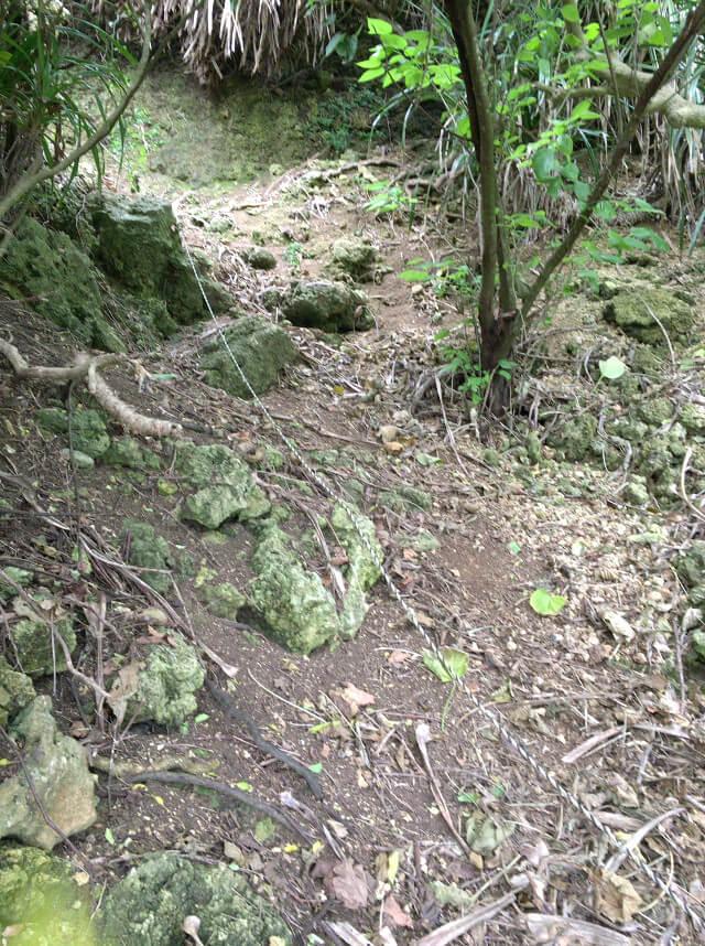 宮古島「石灰華段」へ行く途中の急な崖(1)