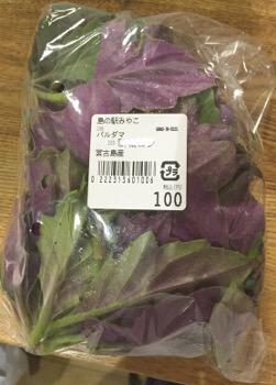 宮古島産の野菜パルダマ