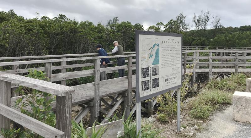 島尻マングローブ遊歩道の入り口