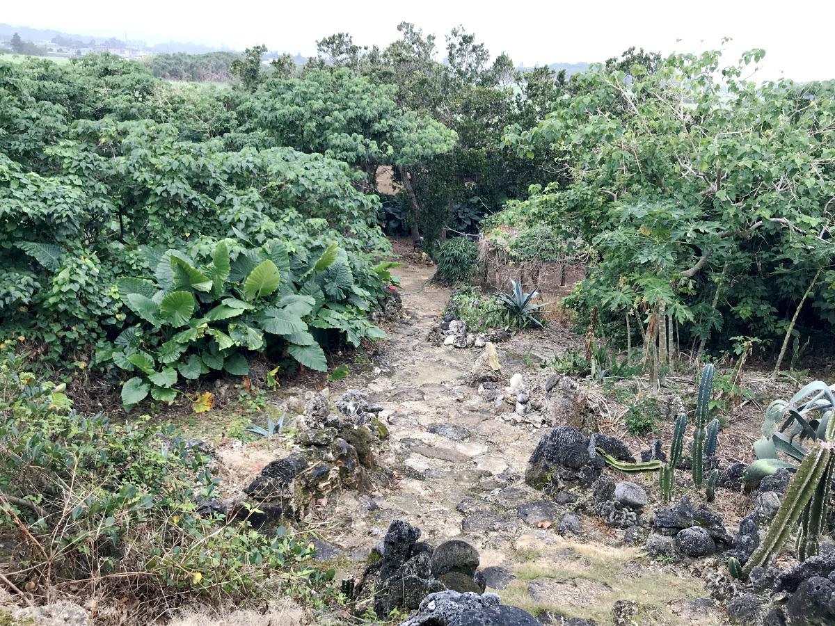 宮古島の天海山石庭へ上る途中