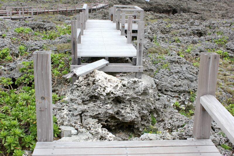 宮古島通り池の遊歩道が途切れているところ