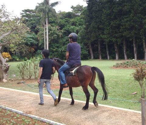 宮古島の伝統工芸村で乗馬(引き馬)体験